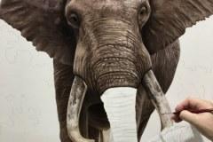 pintura-de-leao-com-elefante-por-Elton-Brunetti-01