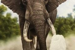 pintura-de-leao-com-elefante-por-Elton-Brunetti-03