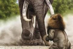 pintura-de-leao-com-elefante-por-Elton-Brunetti-05