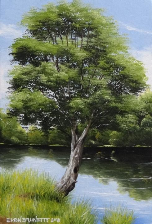 curso-de-pintura-elton-brunetti-tela-iniciantes-03