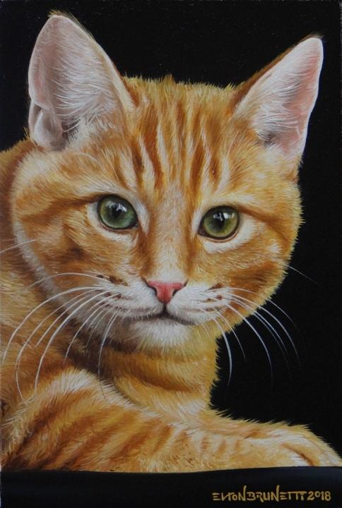 curso-de-pintura-elton-brunetti-tela-iniciantes-10