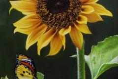 curso-de-pintura-elton-brunetti-tela-iniciantes-06