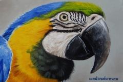 curso-de-pintura-elton-brunetti-tela-iniciantes-09